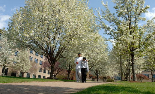 Colleges In Worcester Ma >> Assumption College - Worcester, MA - VA Education Benefits