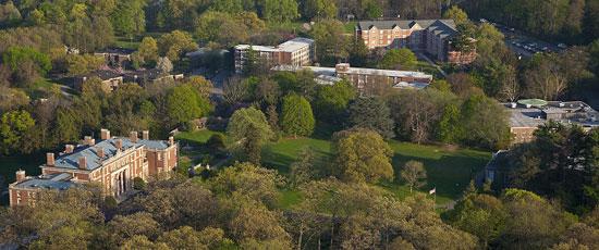 fairleigh dickinson university college essay question