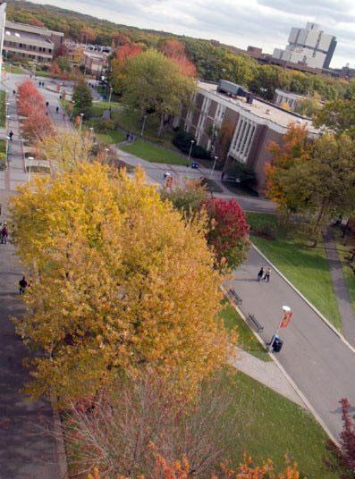 2015-2016 Stony Brook University Application Thread
